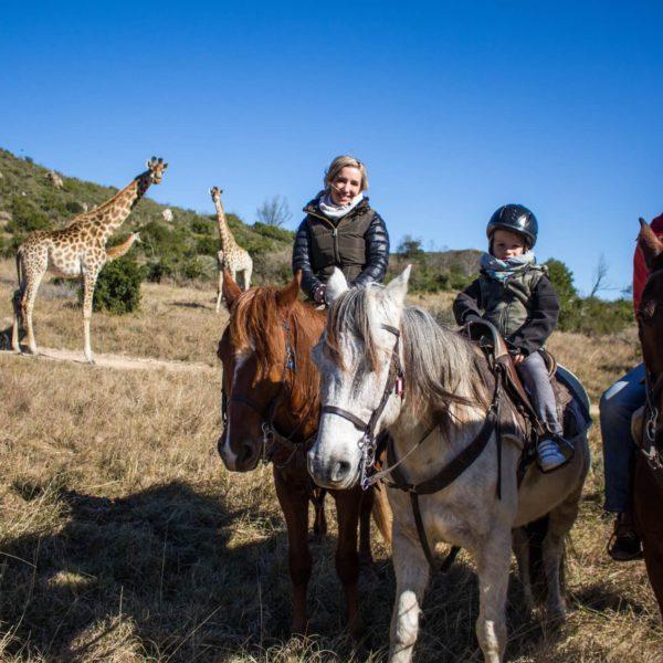 Te paard op safari