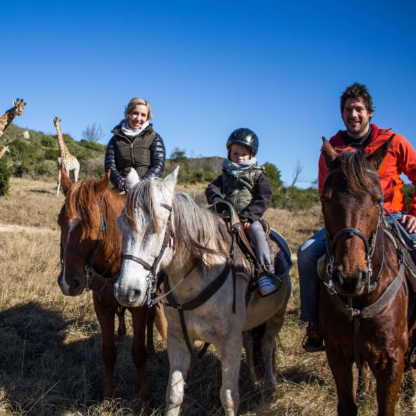 Gezin te paard op safari